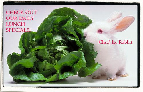 Chez Le Rabbit
